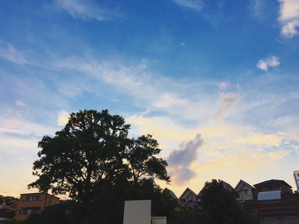 夕日空青空オレンジ色優しい