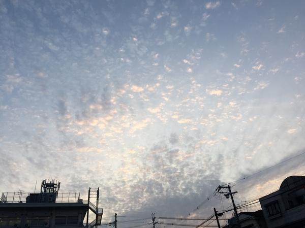 空写真カメラ夕方春雲