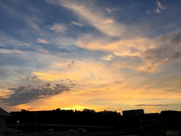 夕日空オレンジ色優しい
